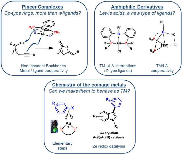 "Conférence ""Non-innocent Bifunctional Ligands for New Avenues in Pd and Au Chemistry"""