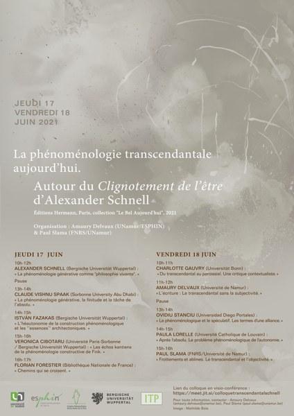 """""""La phénoménologie transcendantale aujourd'hui"""""""
